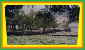 Cuando contemplo el lago