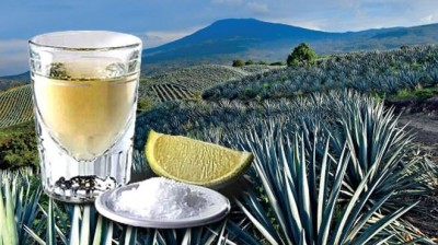 Yo, . . . el tequila